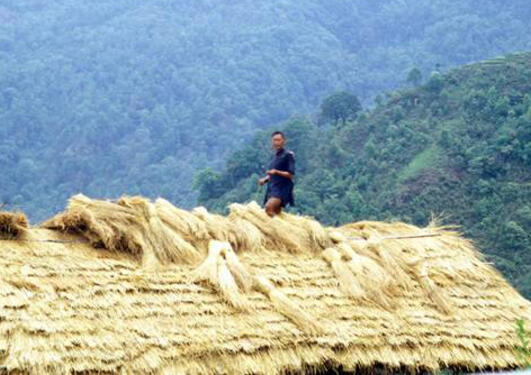 A man on top of a building in the Himalaya making a roof from straw
