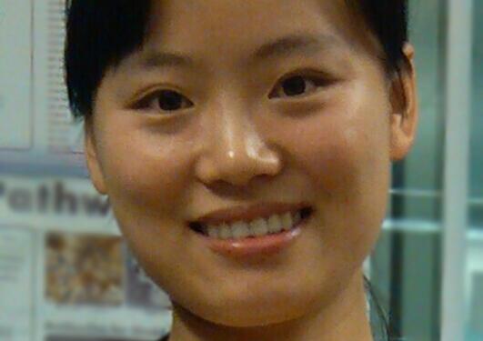 Portrait of Yaping Hua.