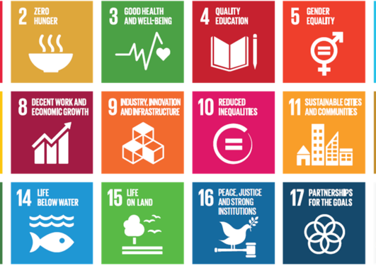sustinable development goals
