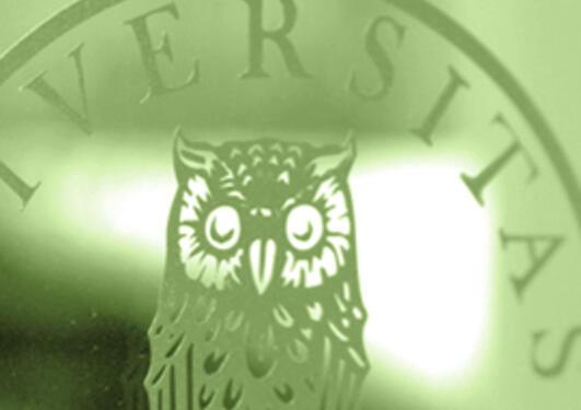 illustrasjonsfoto av UiB logo i grønntoner