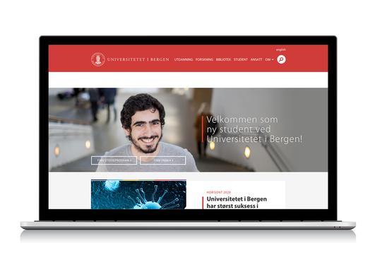 Illustration photo for the new web design