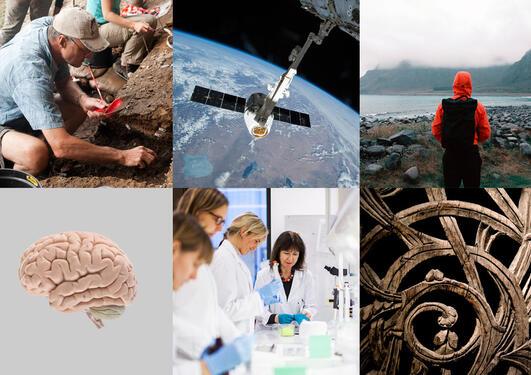 Montasje av bilder som viser forskningsaktivitet