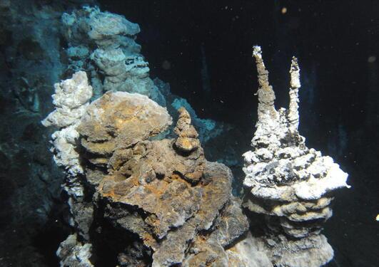 Foto fra Lokeslottet under havet