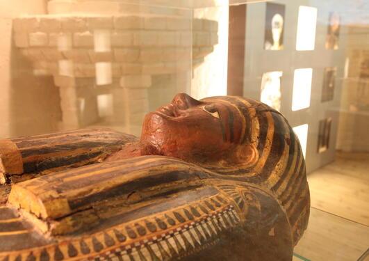 mumie program v 2017