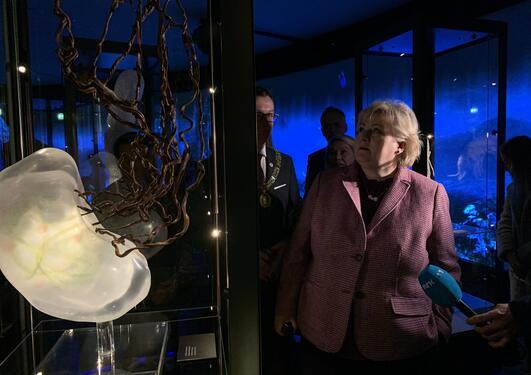 Solberg på museet