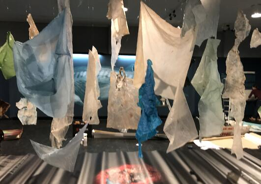 Ustillingen plasthvalen