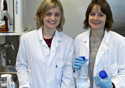 To forskere fra Bergen har avslørt en hittil ukjent affære mellom to proteiner. Det kan føre til ny behandling av diabetes.