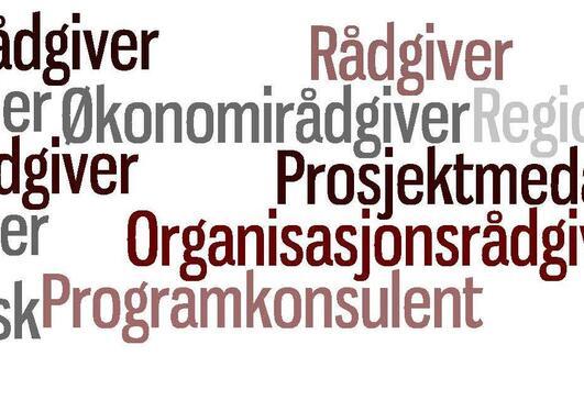 Eksempler på stillingstitler i kategorien Interesse- og ideelle organisasjoner