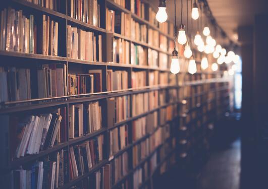 Bibliotek i kveldsbelysning