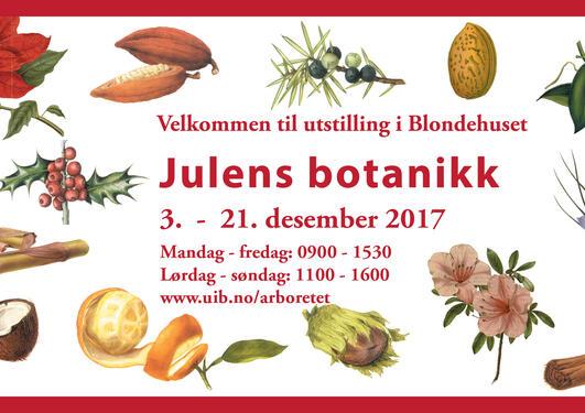 Julens botanikk vises i Blondehuset.