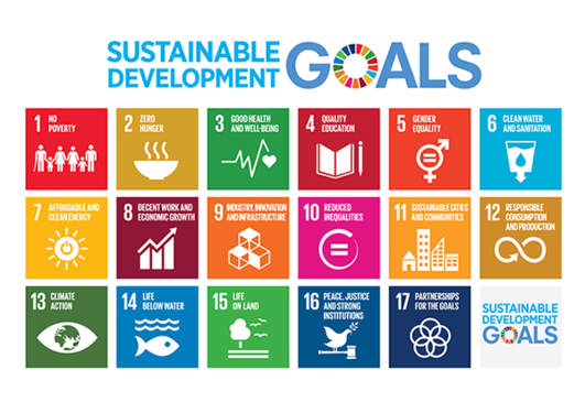 We would like to invite you to the SDG conference in Bergen!
