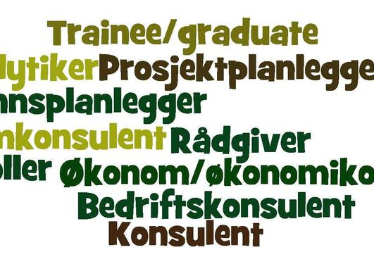 Eksempler på stillingstitler i kategorien Konsulent og frie yrker