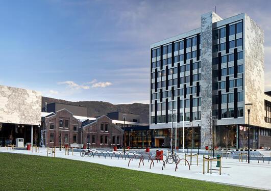 Høgskolen i Bergen