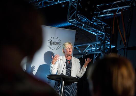 Kunnskapsminister Kristin Halvorsen og regjeringa vil laga ein langtidsplan for forsking og høgare utdanning som mellom anna skal skapa kunnskapstørst i samfunnet.