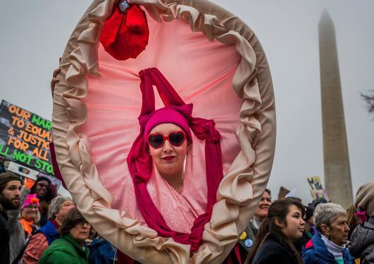 Women's March 21 January 2017