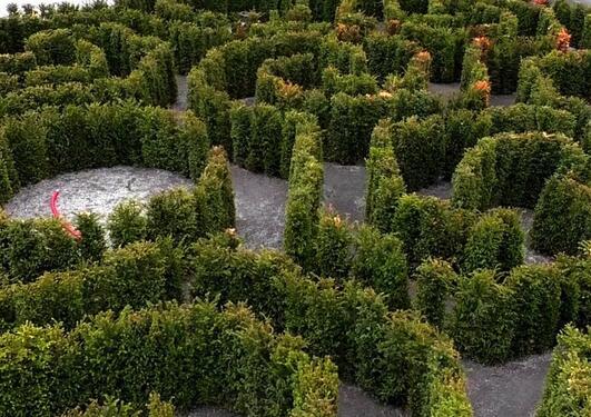 Labyrinten i botaniske hagen ved Milde