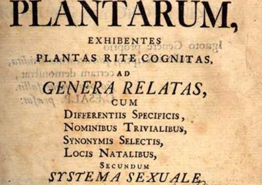 Species Plantarum er Linnes berømte verk fra 1753.