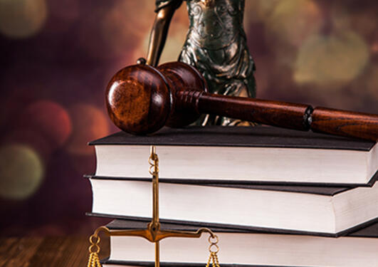 BIlde av bøker og justitia