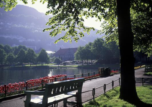 Lille Lungegaardsvann Bergen