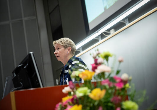 Norwegian diplomat Marianne Loe from the Norwegian Mission to the UN during her opening keynote at the 2019 Bergen Summer Research School on Monday 17 June.