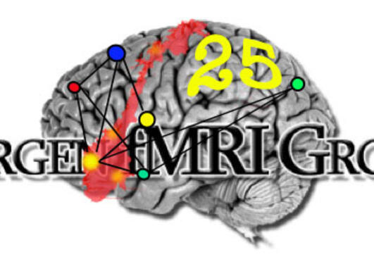 fMRI Group; 25 years