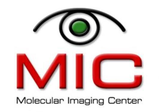 Logo MIC