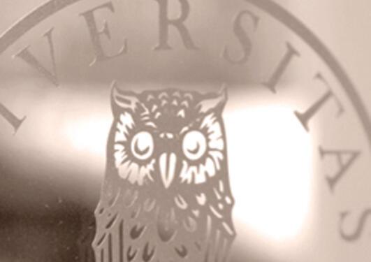 illustrasjon med utsnitt av uglen i UiB emblemet