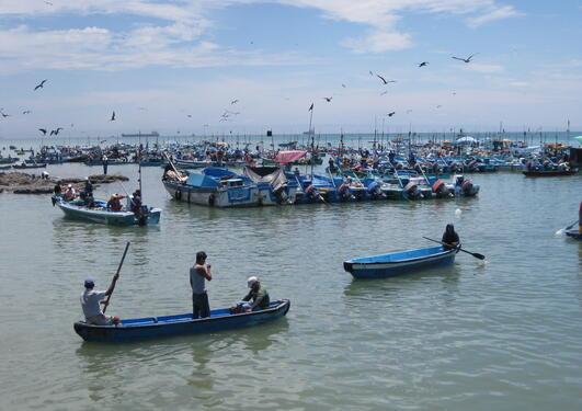 Viser en fiskeflåte på havet, med fiskere i små kano-lignende båter