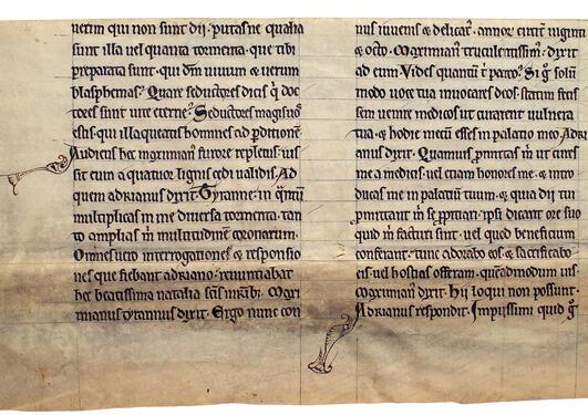 Fotografi av mauskriptfragment