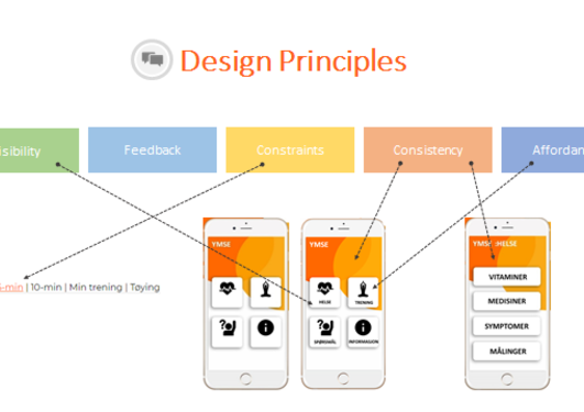 Design principles for the application