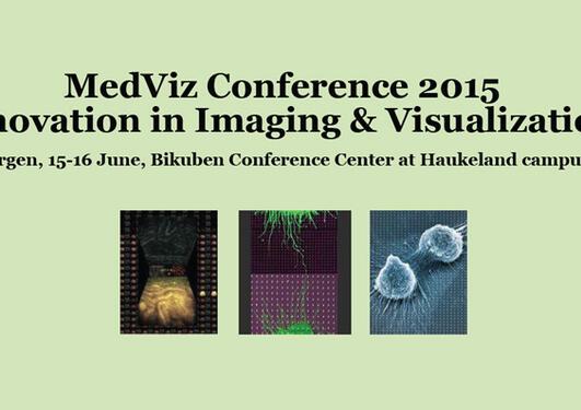 MedViz conference 2015