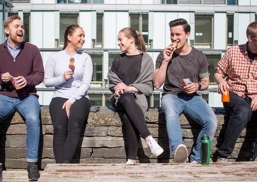 Fem studenter sitter i solen