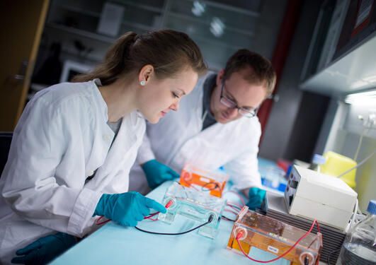 To ph.d-kandidater på labben