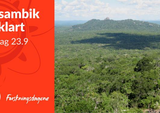 Landskap, Mosambik