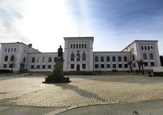 Universitetmuseet i Bergen