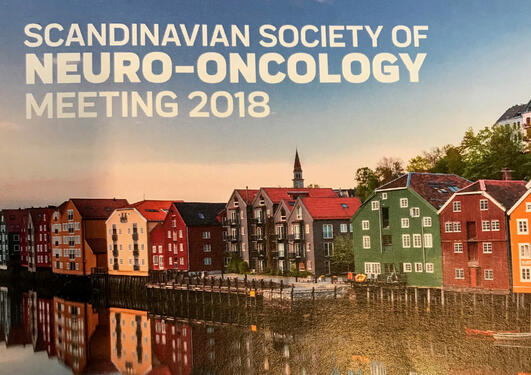 Scandinavian Society of Neuro-Oncology 2018