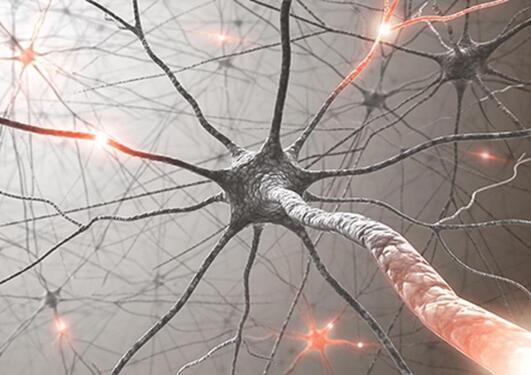 Photo of active neuron