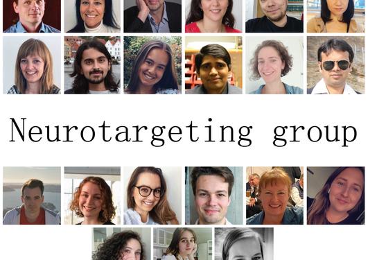 Members of neurotargeting group