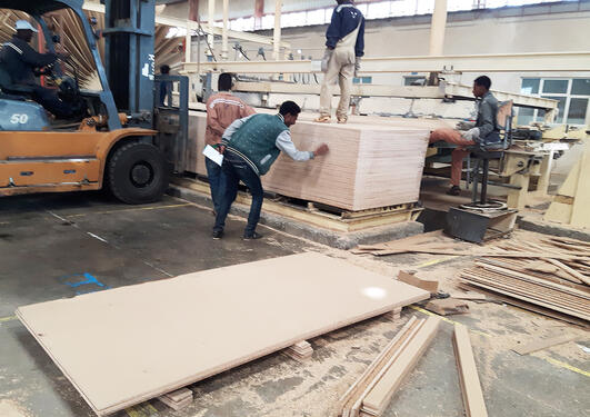Particleboard factory in Ethiopia