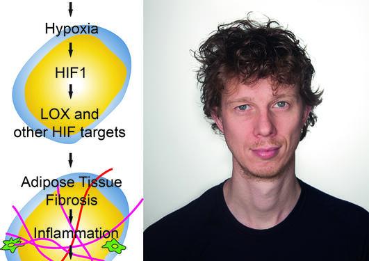 Hypoksi og Nils Halberg