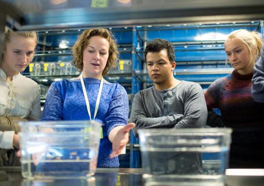 En vitenskapelig ansatt viser tre studenter noe på en lab