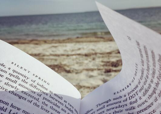"Reading ""Silent Spring"" by the Atlantic Ocean"