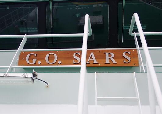 The G.O SARS.