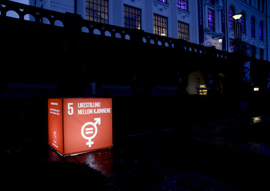 Cube of SDG14 on gender equality outside the University Aula during the SDG Conference Bergen in February 2020.