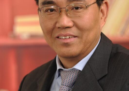Professor Peng Xizhe