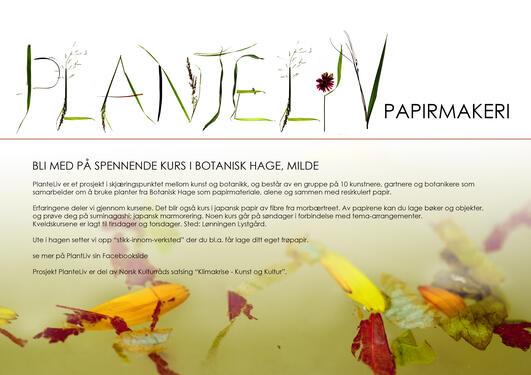 Planteliv