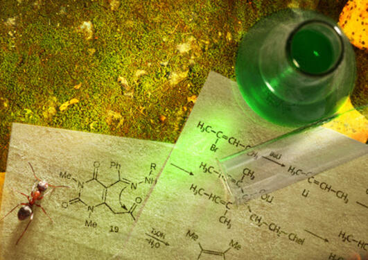 Green chemistry with reaction formula on moss