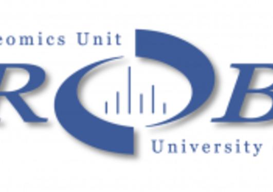 Logo Probe