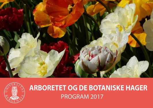 Programfolder 2017