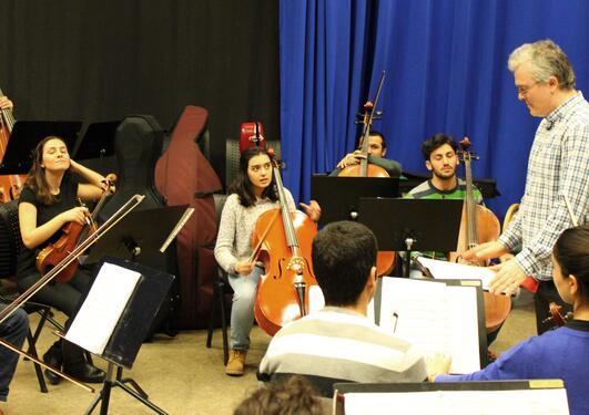 illustrasjonsbilde med fotografi av eurasian chamber orchestra under ledelse av ricardo odriozola